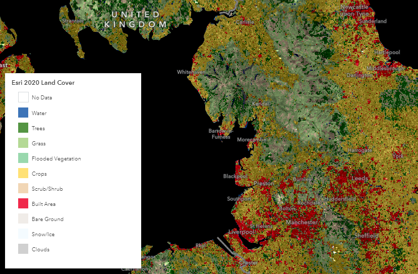 Esri's 10-metre resolution map of the Earth's land surface from 2020.
